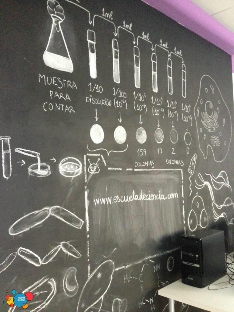 escuela de ciencias 2